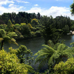 Pukekura Park New Plymouth New Zealand
